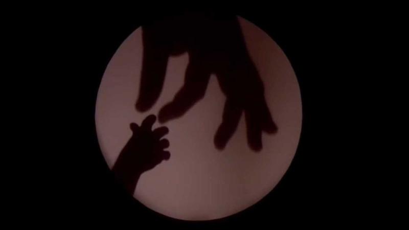 Raymond Crowe - Shadow Play