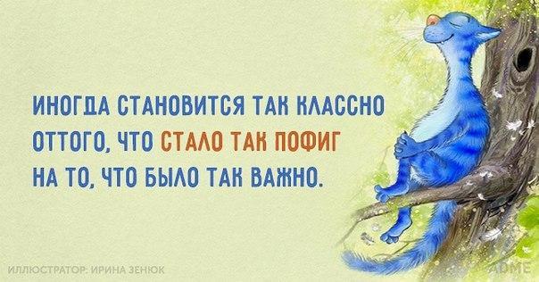 https://pp.vk.me/c7001/v7001050/185c8/Gljf-T0vYq8.jpg