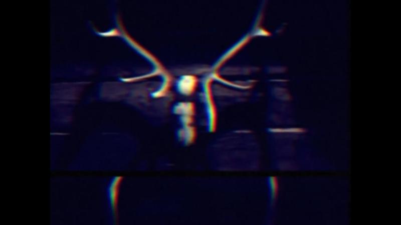 Found Footage Super 8 Reel 56.23584.326_ Fragment 22D