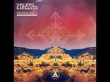 Protonica - Codes (Zen Mechanics Remix)