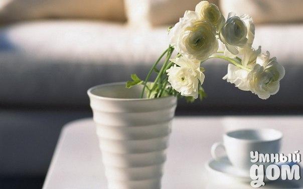 Прекрасного начала дня! Просыпайтесь вместе с нами!:)  #Музыка_утро@smart_home