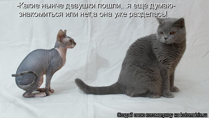 http://cs421417.userapi.com/v421417049/8a6/30H3tN9IzoE.jpg