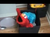 Elmo And Cookie Monster XXX