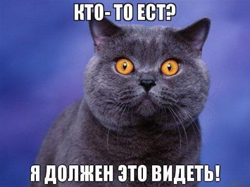 https://pp.userapi.com/c620021/v620021651/180cd/imSORmGjHxk.jpg