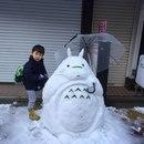 В Токио прошёл самый крупный снегопад за последние 4 года.