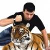 Дрессированные животные ANIMALS-PRO