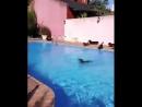 Pool partyyyyy