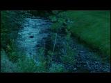 KAIPA - Children Of The Sounds (Lyric Video)