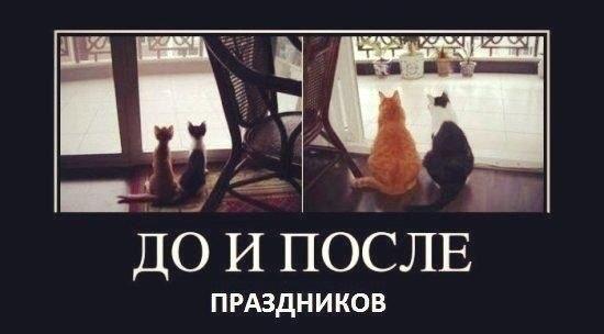 Касались его рейтинг институты иностранных языков в москве привезла