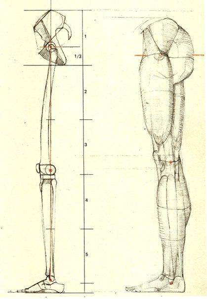 Рисуем ноги (6 фото) - картинка