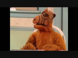 Alf Quote Season 3 Episode 12_Плутовал