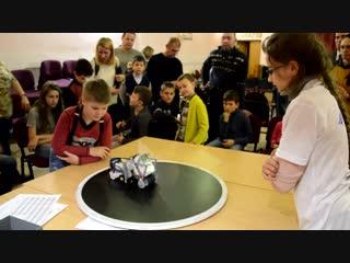 Фестиваль робототехники на базе ГБУ ДО Детского Дома творчества Красносельского района
