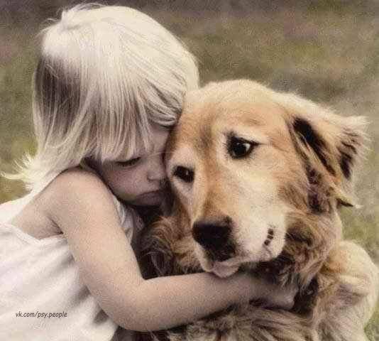 Маленькие знаки внимания приводят к большой дружбе.