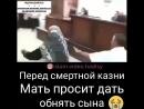 Мать просит встречу с сыном перед смертной казни