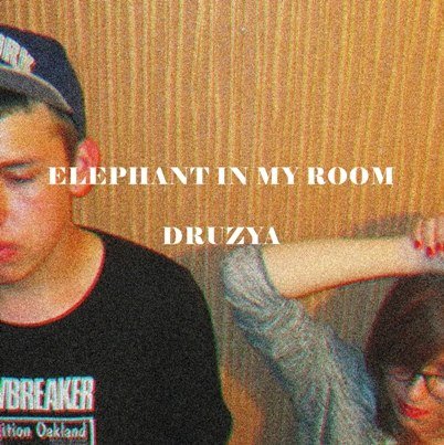 Elephant in My Room - Druzya [acoustic EP] (2014)