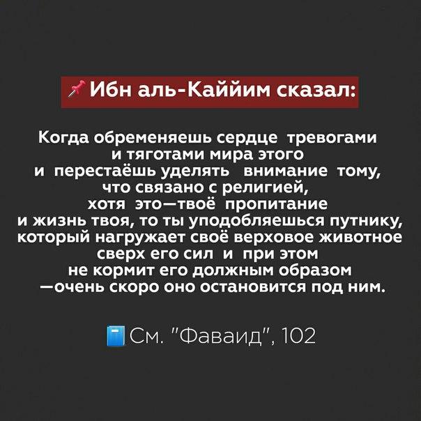 Фото №456243670 со страницы Амира Алханова