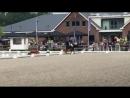 Horsetelex Trafalgar semi final