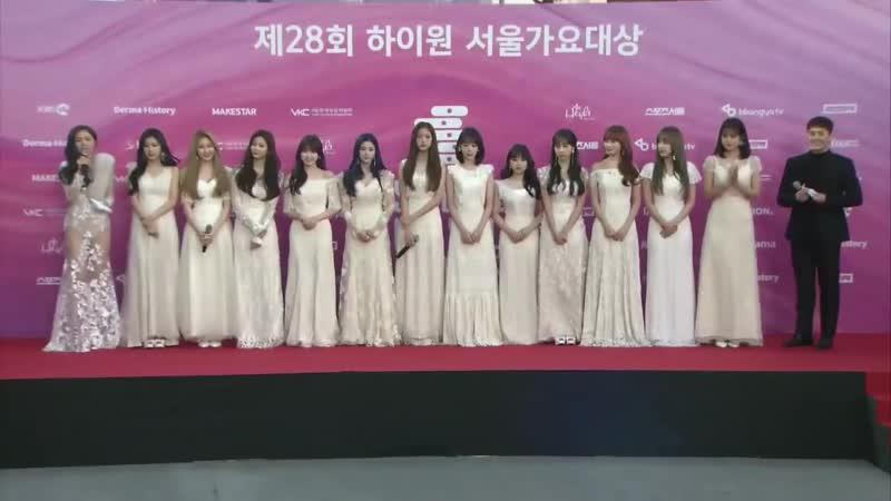 190115 아이즈원 서울가요대상 레드카펫 IZONE Red Carpet Seoul Music Awards