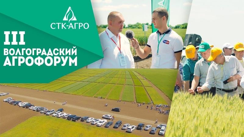 III Волгоградский Агрофорум СТК Агро