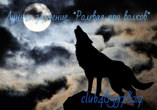 картинки волков: