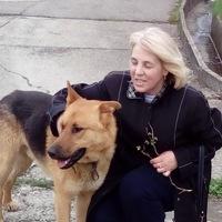 Ксения Шишмарёва