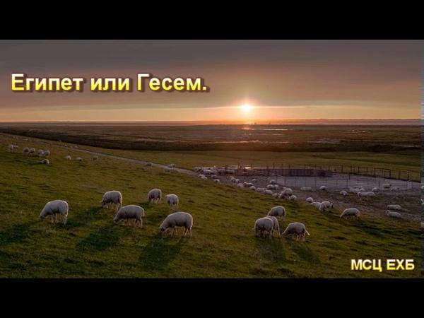 Египет или Гесем. П. Костюченко. МСЦ ЕХБ.