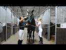 Мир конного спорта глазами детей НП 7
