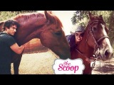 Ian Somerhalder &amp Nikki Reed buy a horse together! The Scoop with Arden and Hunter!