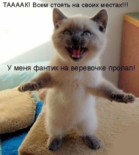 http://cs14112.vk.me/c7005/v7005576/3a1f/6KV9XN7FwxI.jpg