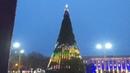 Как работает 3D иллюминация на новогодней елке в Херсоне
