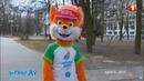 Cтая Лесиков в лесу и тренировка по Самбо национальной сборной Беларуси. «Игры.BY» 1