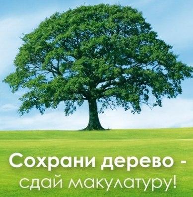 Петербуржцам становится легче собирать макулатуру
