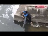 Чудесное спасение собаки из воды