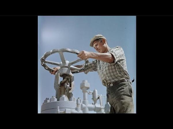 Люди труда People of Labour 1950s