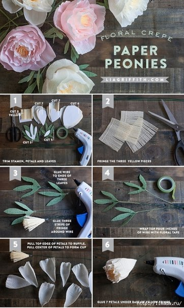 Пионы из бумаги пошаговая инструкция