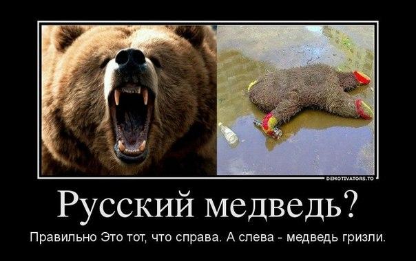 Россиянам советуют привыкать быть вдвое беднее в следующем году, - западные СМИ - Цензор.НЕТ 5868
