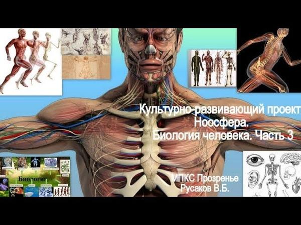 Культурно-развивающий проект Ноосфера. Биология человека. Часть 3.