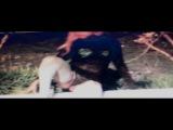 BLACK KRAY $$$ $HERM LU$T X X X PROD BY ODESZA $$ CHILLWAVE HERON FLOW