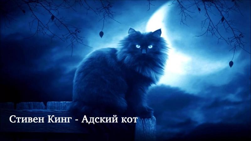 Стивен Кинг - Адский кот