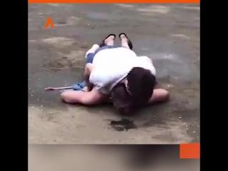 Женщина поймала грабителя   АКУЛА