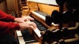 Johann Sebastian Bach Nun komm, der Heiden Heiland BWV 661 - David Boos, organ