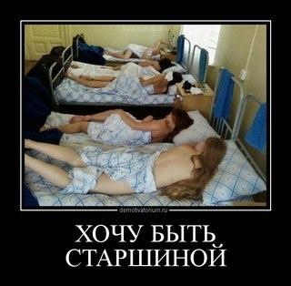 Празднование нг с кальяном(ми) | ВКонтакте