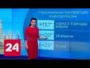 Погода 24 Русскую равнину ждет пик потепления Россия 24