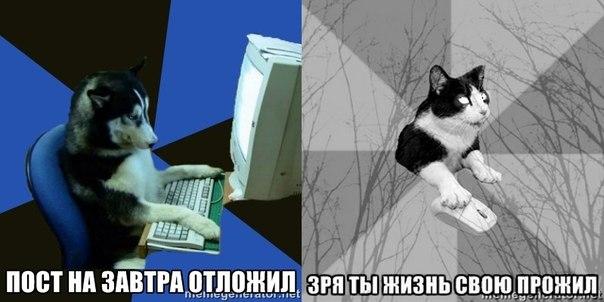 http://cs618919.vk.me/v618919310/1859/94W2GMATw8c.jpg