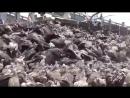 Похороны буддистов на Памире