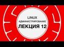 11. LINUX. Распределение ресурсов системы | Технострим