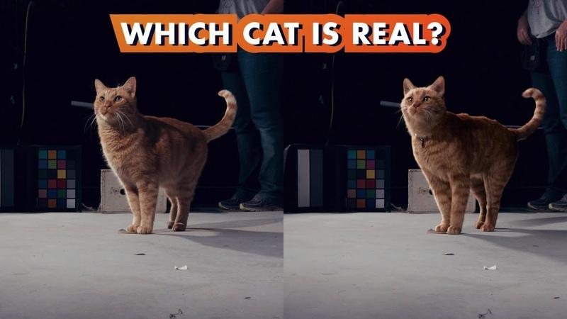«Капитан Марвел» (Ролик о визуальных эффектах: Which Goose the Cat is Real?)