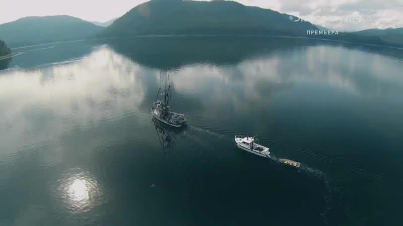 Alaskan Bush People / Аляска: Семья из леса - Братья-позитивщики (Отрывок)