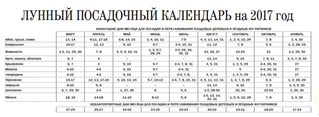 Посевной календарь на июль