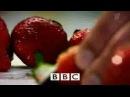 BBC - 10 вещей, которые Вы не знали о потере веса / BBC ...
